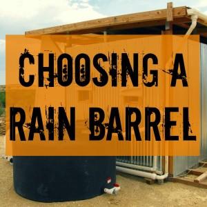 rainbarrel1