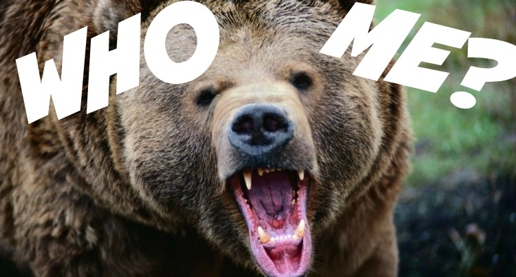 grizzlywhome