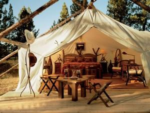 tent city, Mon Sep 26, 2005,  4:50:00 PM,  8C, 6000x8000,  (0+0), 100%, Default Settin, 1/200 s, R73.9, G39.9, B0.8