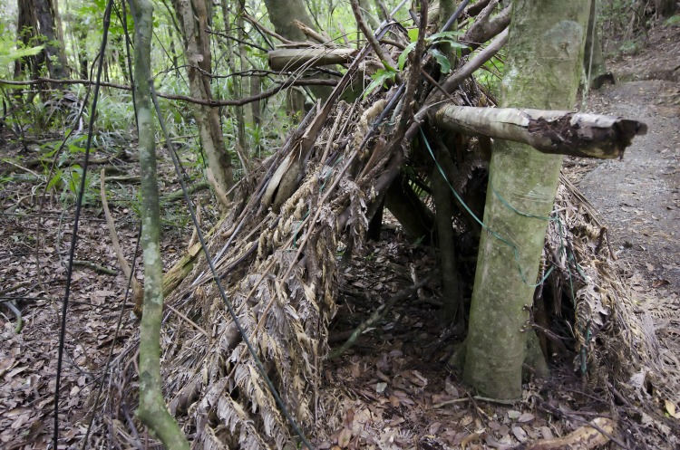A survival hut in the forest. Photo by Rafael Ben-Ari/Chameleons Eye