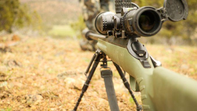 7 Best Bolt-Action Rifles Under $500 – Patriot Caller